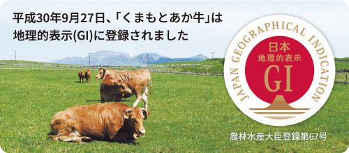 くまもとあか牛は地理的表示(GI)に登録されました